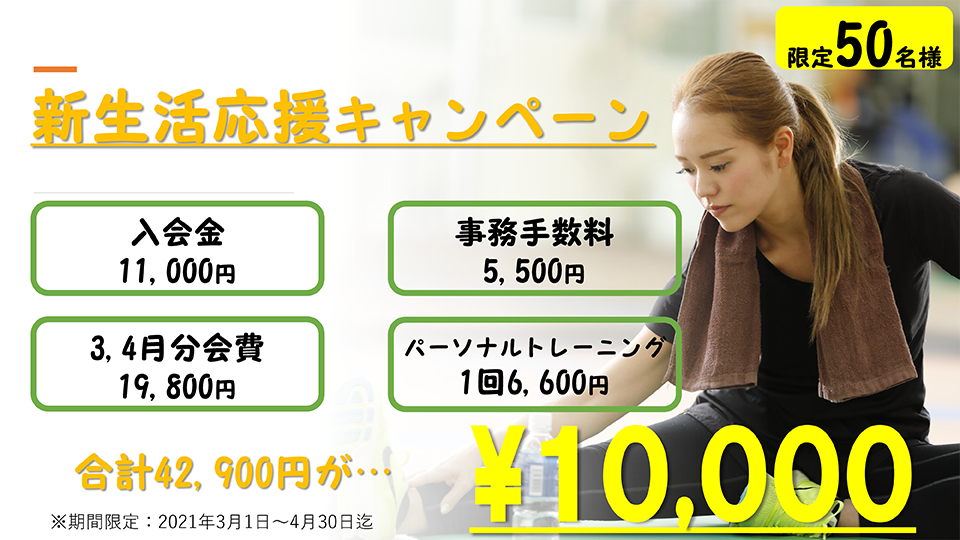 千葉八千代本店キャンペーン