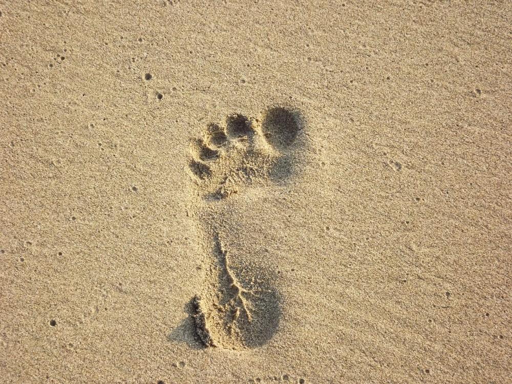 beach-1952823_1280